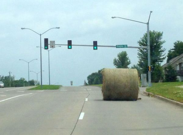 hay-on-the-road
