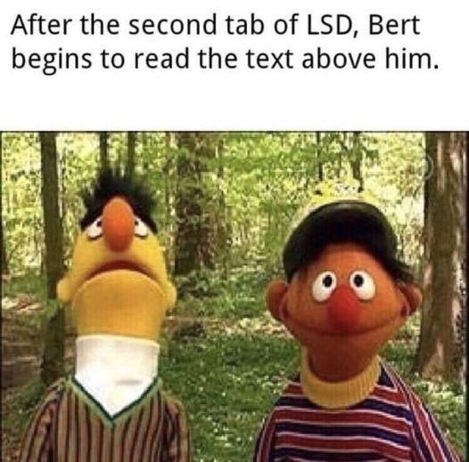 Bert-on-LSD....jpg