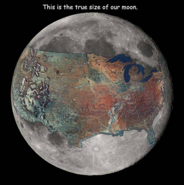 Big-bad-moon....jpg