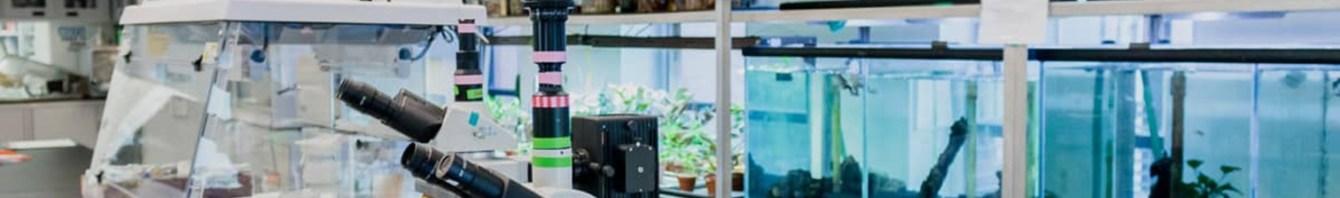 laboratuvar biyoloji1