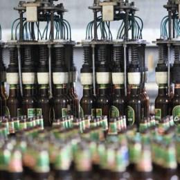 Berarii de la Ursus caută tineri pe care să-i școlească în afacerea producției de bere