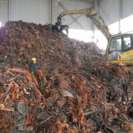 """Brașovul merge cu 75 de tone în """"bătălia reciclării"""". Vom avea sau nu o zonă eco de agrement cu wi – fi?"""