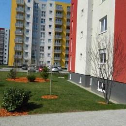 Apartamentele vechi s-au scumpit, iar cele noi s-au ieftinit în luna aprilie