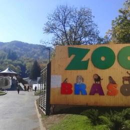 Zoo Brașov va fi deschisă și luni, în prima zi de vacanță a școlarilor din ciclul primar