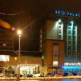 Afaceri de 5.71 milioane de euro pentru Aro Palace în 2016