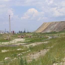 """Muntele de gunoi din Triaj va fi """"anvelopat"""" cu mai multe straturi de pământ"""