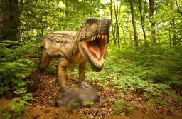 Dino Parc a ajuns la 1,5 milioane de vizitatori de la deschidere. Dinozaurii au tăiat bilete de 11,6 milioane de lei anul trecut