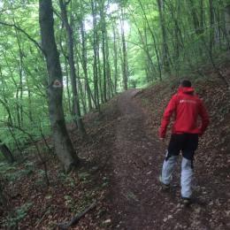 Turiștii pot afla în timp real care este starea traseelor montane din apropierea Brașovuluiși dacă vremea permite aventurarea în drumeții montane