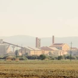 """Inginerii cu activele Fabricii de Zahăr Bod: Compania spune că lucrează normal, dar nu suflă nicio vorbă despre faliment FZB și """"mutarea"""" activelor pe o nouă firmă"""