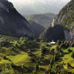 50.000 de metri cubi de lemn au fost extrași din 2014 din Parcul Național Piatra Craiului