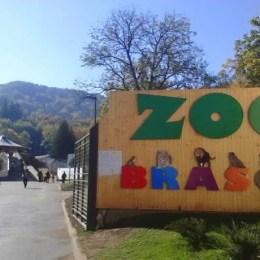 Zoo Brașov a trecut la programul de iarnă, de la 1 octombrie