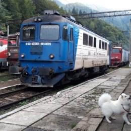 De Paște, CFR Călători suplimentează numărul trenurilor și acordă discounturi pentru biletele spre Marea Neagră