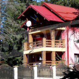 Dăncilă și-a făcut o vilă roz lângă Sanatoriul de Nevroze din Predeal