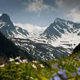 Munții Făgăraș s-ar putea transforma în cel mai întins parc național acoperit de păduri din Europa