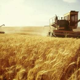 Un inginer agronom poate ajunge la un salariu net de 1.500 de euro pe lună