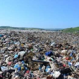 Finanțare de 215.000 de euro pentru o platformă digitală românească ce ajută la reciclarea deșeurilor