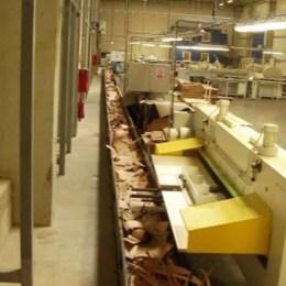 Austriecii din grupul Frischeis au majorat capitalul producătorului brașovean de furnir JF Furnir cu 3 milioane de euro