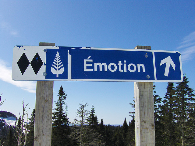 Emotion by Joe Shlabotnik