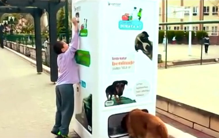 Your Empty Bottles can Help Feeding Stray Dogs