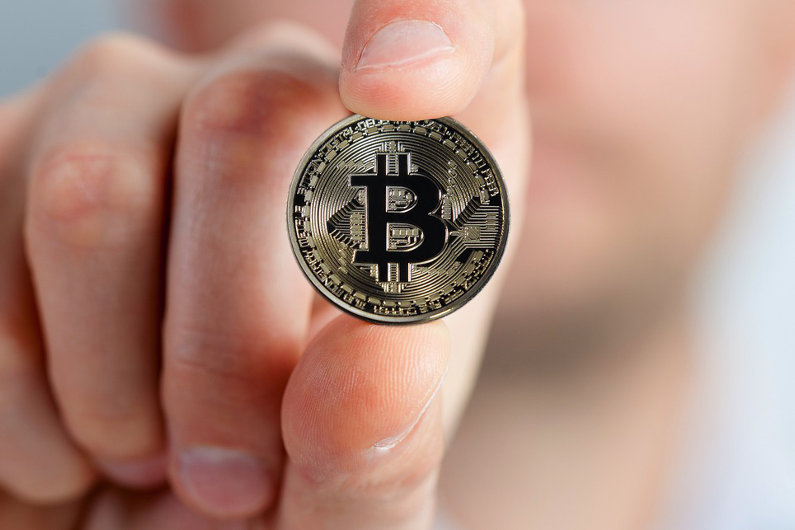 Bitcoin Price Phenomena: Revolution in Online Payment (Infographic)