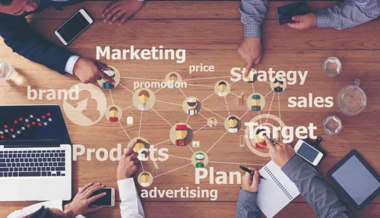 Working on business marketing plan