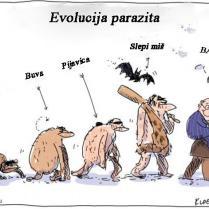 ilustracija-7