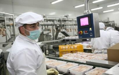 Firma care a preluat Avicola va deschide 76 de ferme de pui