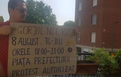 Gorjenii care se intorc din strainatate protesteaza la Targu Jiu
