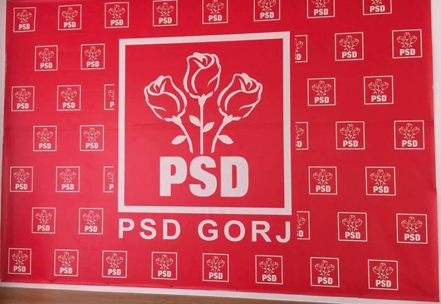 PSD Gorj are un nou vicepreședinte