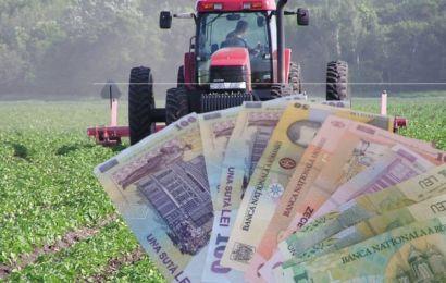 Cum se vor putea depune cererile pentru subvențiile fermierilor