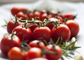Tvornica povrća kod Mostara imat će 60 posto veći kapacitet