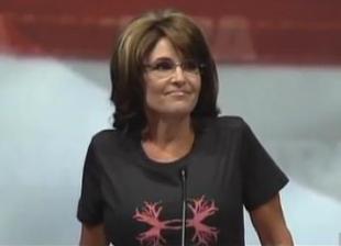 Palin-NRA