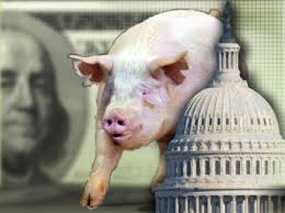 pork politics