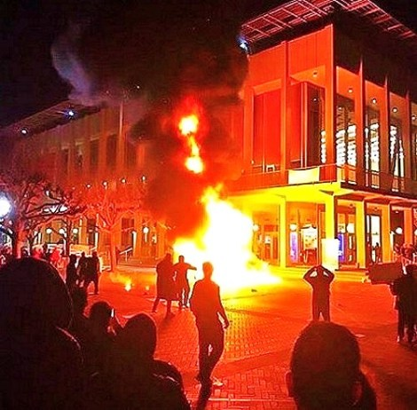 berkeley riots milo screenshot Ann Coulter
