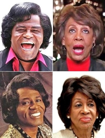 SG maxine waters james brown wig called black racist by black trump supporters