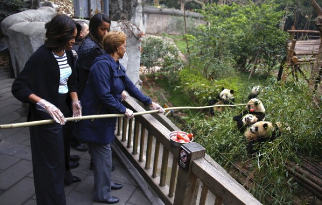 Getty Michelle Obama - Panda
