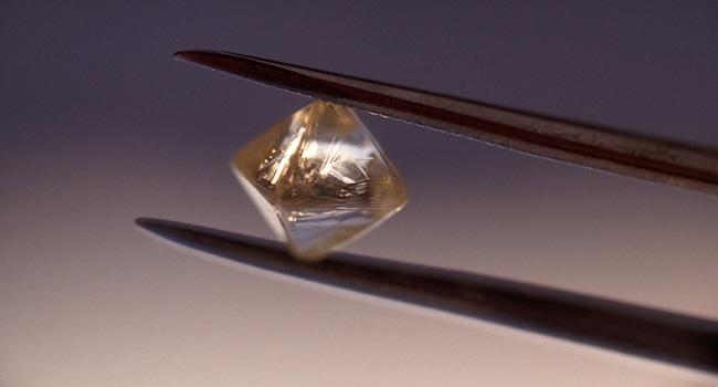 elmas-bizsiziz