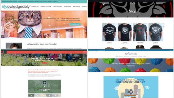 Website Design, Website Management, Web Hosting - Bizstyler