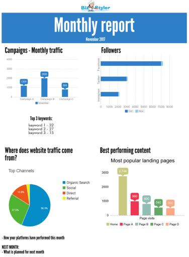 Bizstyler - Monthly Report Template