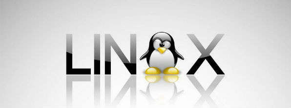 linux for business