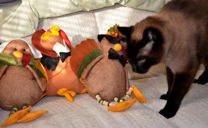 Linus and turkey
