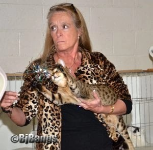 Mary Goehring, of Connecticut, and her Savannah Serengeti