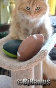Suppose kitty mistakenly stepped on the footballs?