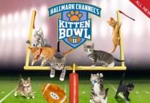 Hallmark Channel's Kitten Bowl II