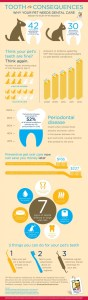 February: National Pet Dental Health Month
