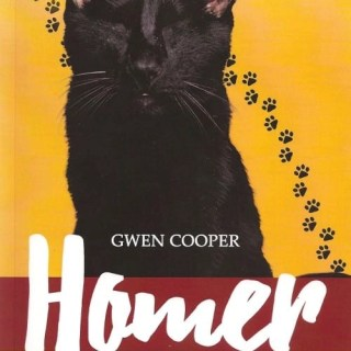 Homer, The Ninth Life of a Blind Wonder Cat, helps his mission live on