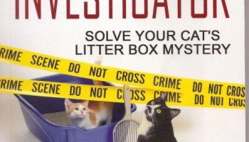 Solve Your Cat's Litter Box Mystery