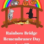 Pin of cats waiting for owner on the Rainbow Bridge