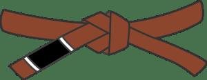 Brown Belt In BJJ