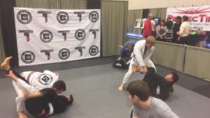 Jiu Jitsu Fighting